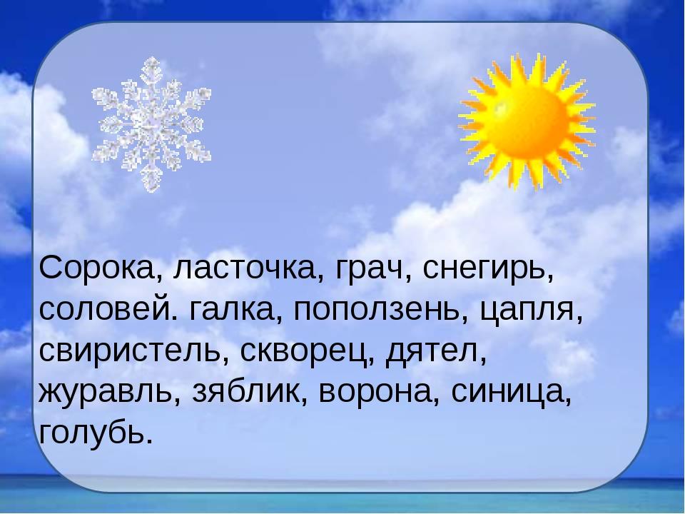 Сорока, ласточка, грач, снегирь, соловей. галка, поползень, цапля, свиристель...