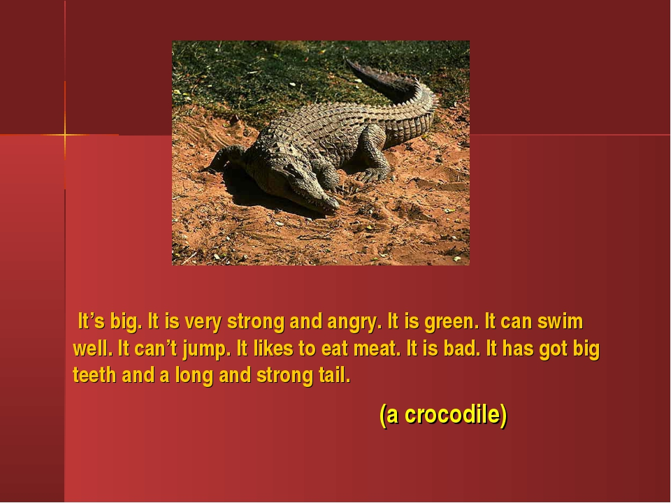 It's big. It is very strong and angry. It is green. It can swim well. It can...
