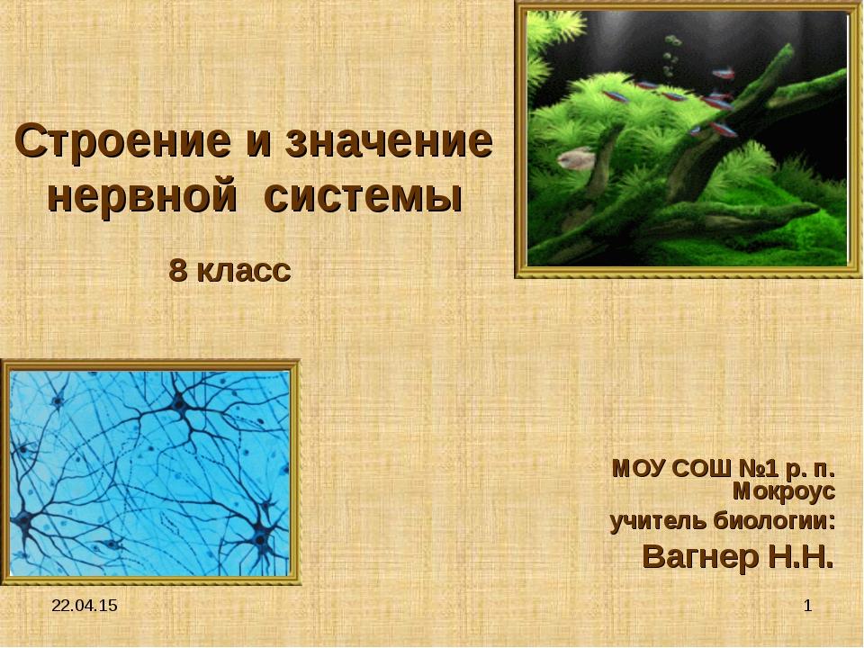 * * Строение и значение нервной системы МОУ СОШ №1 р. п. Мокроус учитель биол...