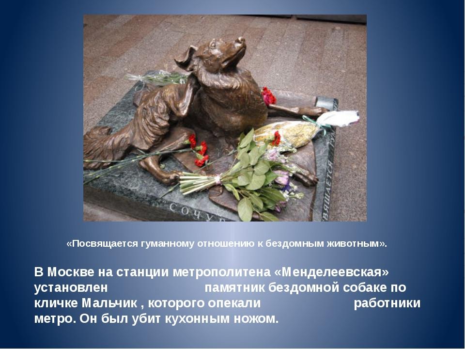 «Посвящается гуманному отношению к бездомным животным». В Москве на станции м...