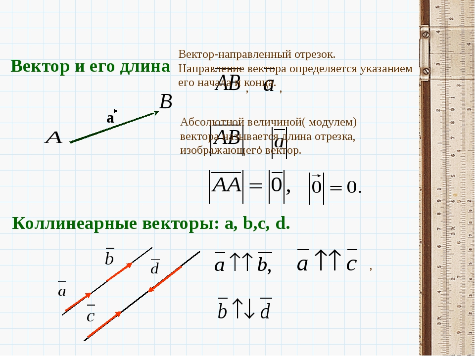 Коллинеарные векторы: a, b,c, d. , , , , Вектор и его длина a Вектор-направле...