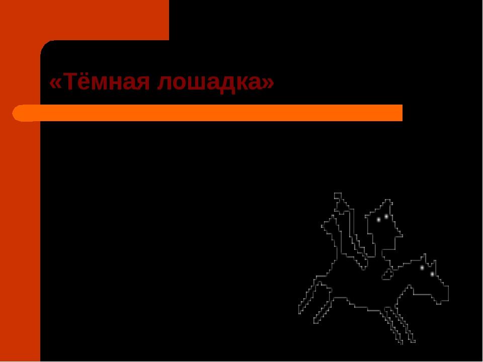 «Тёмная лошадка»