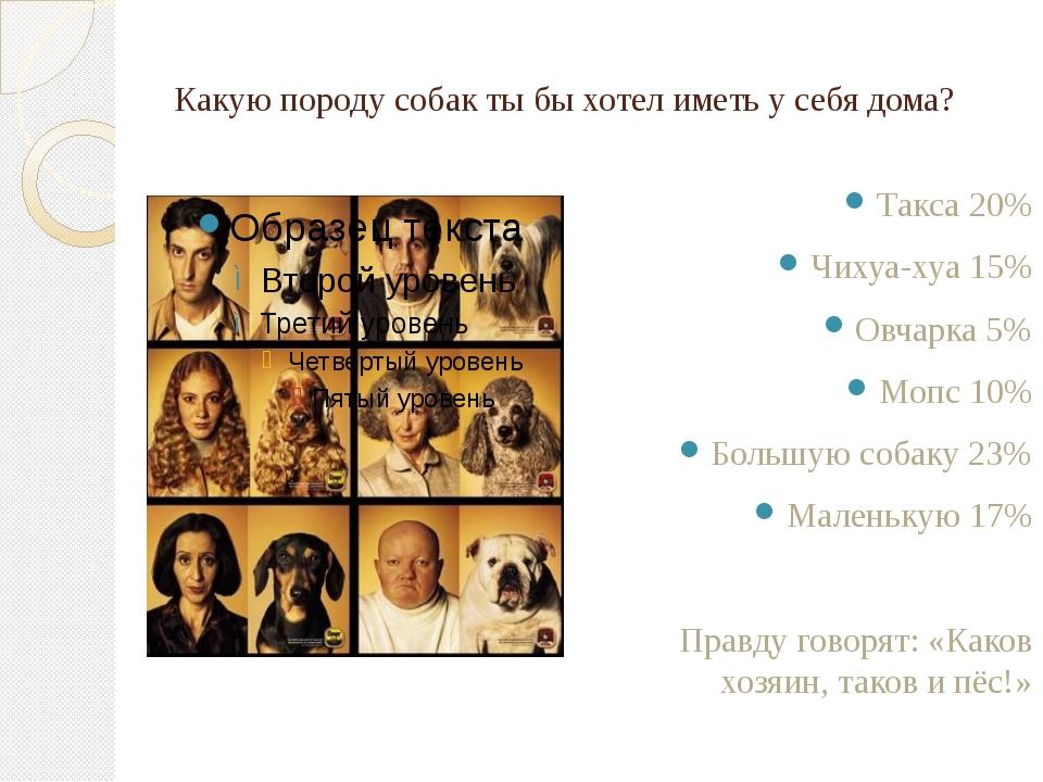 Какую породу собак ты бы хотел иметь у себя дома? Такса 20% Чихуа-хуа 15% Овч...