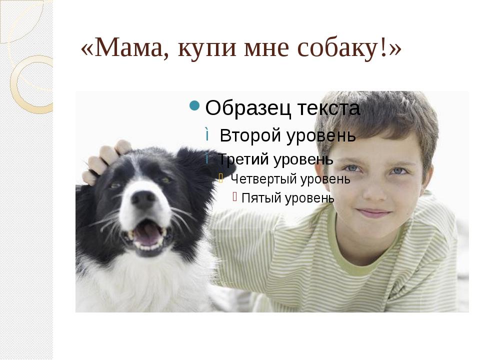 «Мама, купи мне собаку!»
