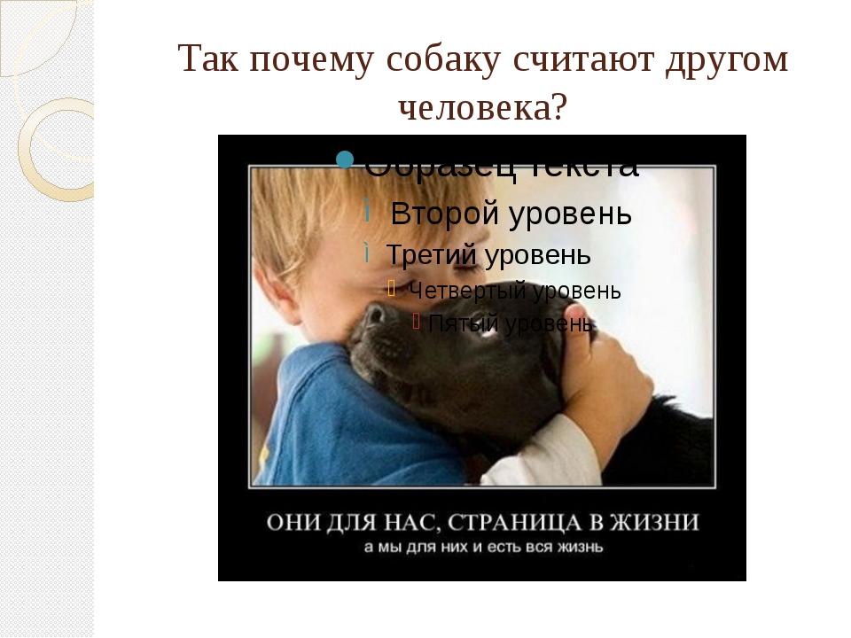 Так почему собаку считают другом человека?