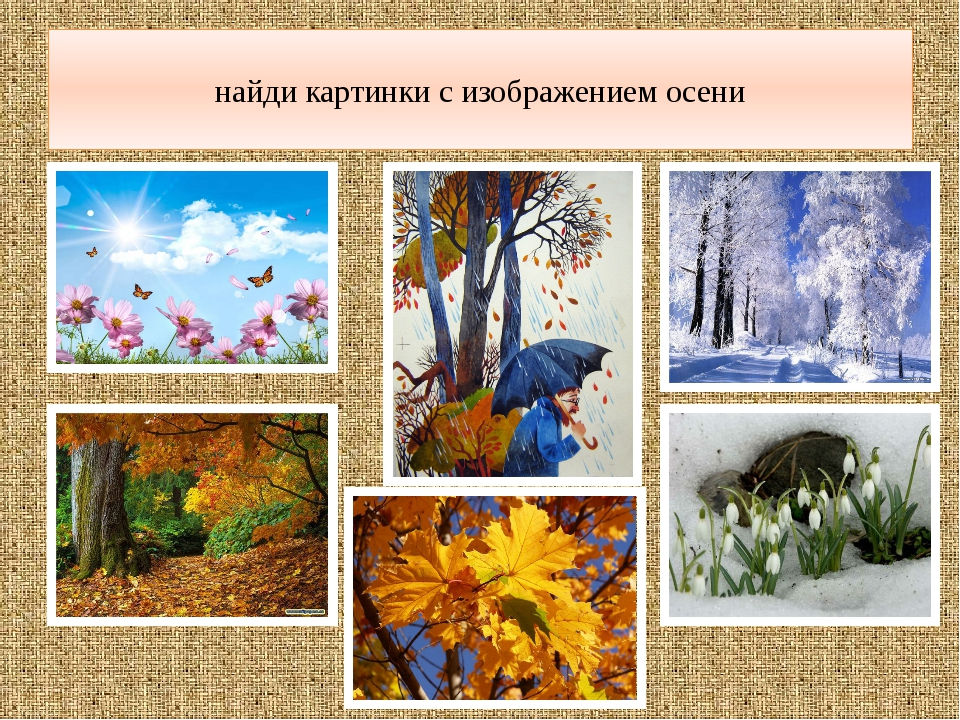 найди картинки с изображением осени