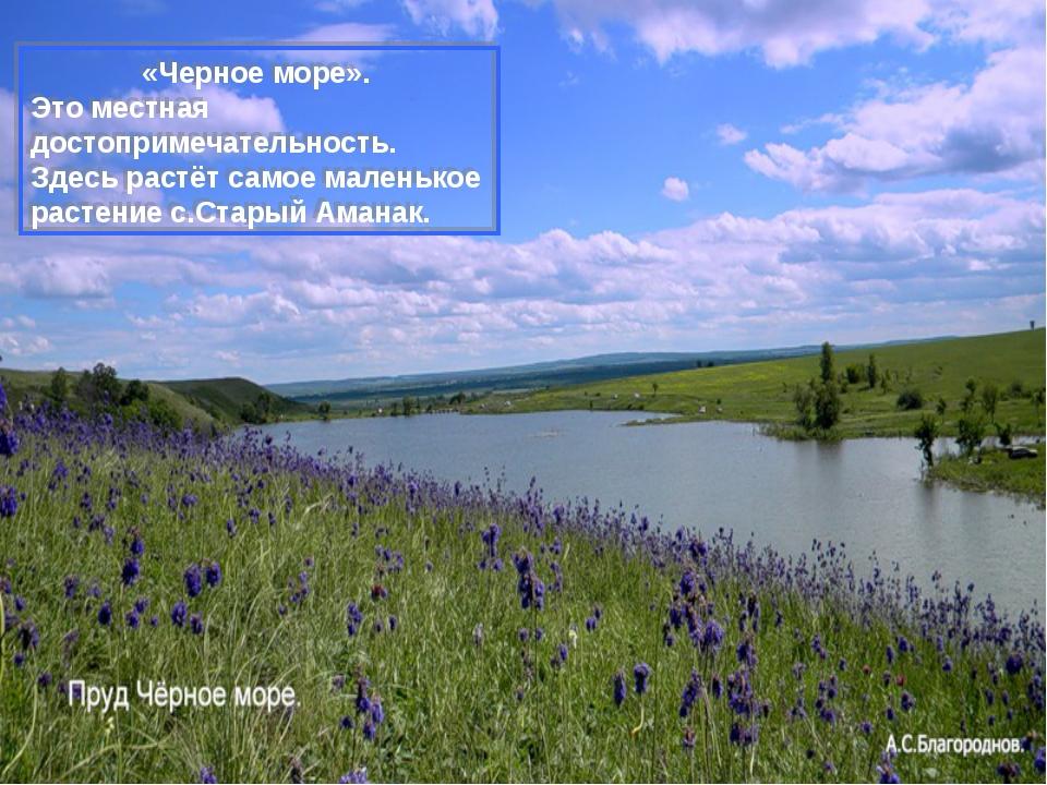 «Черное море». Это местная достопримечательность. Здесь растёт самое маленько...