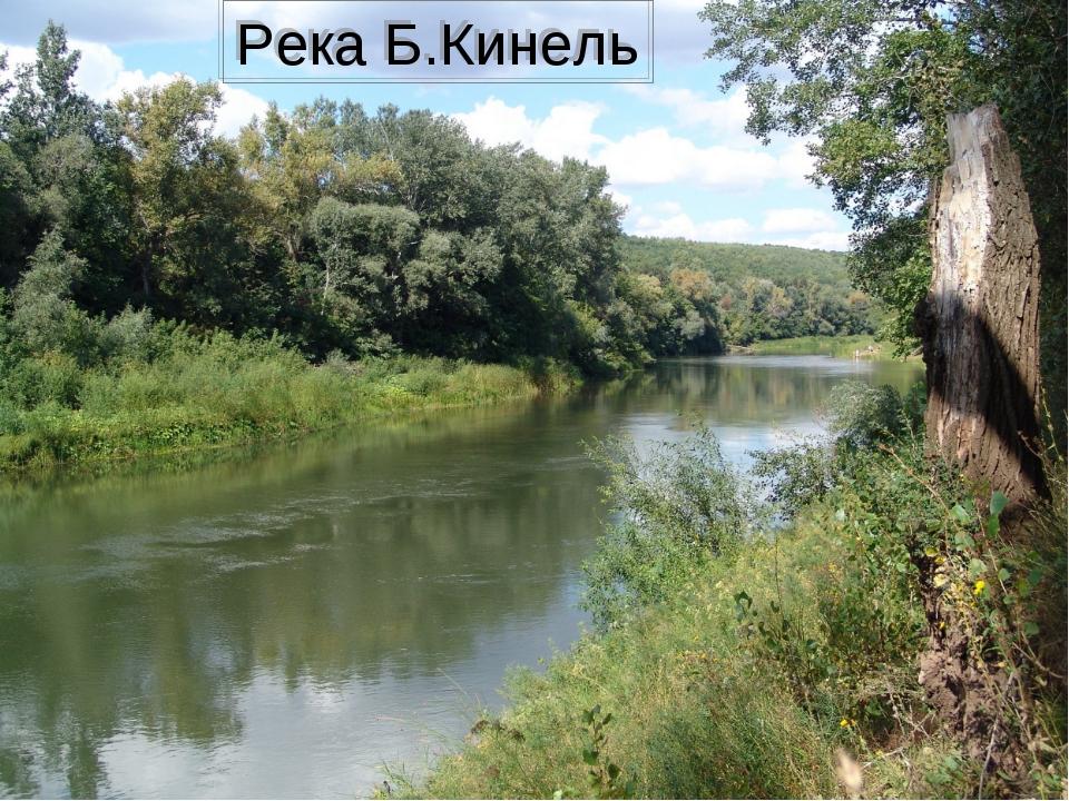 Река Б.Кинель
