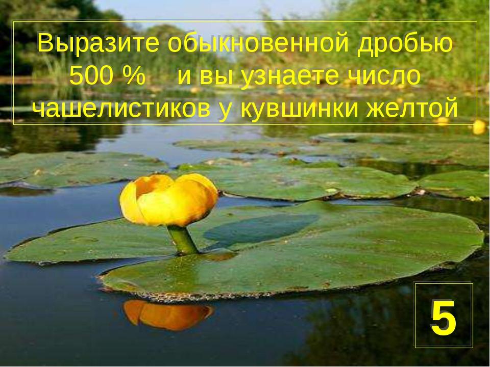 Выразите обыкновенной дробью 500 % и вы узнаете число чашелистиков у кувшинки...