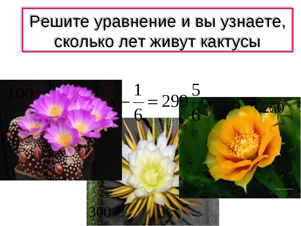 Решите уравнение и вы узнаете, сколько лет живут кактусы