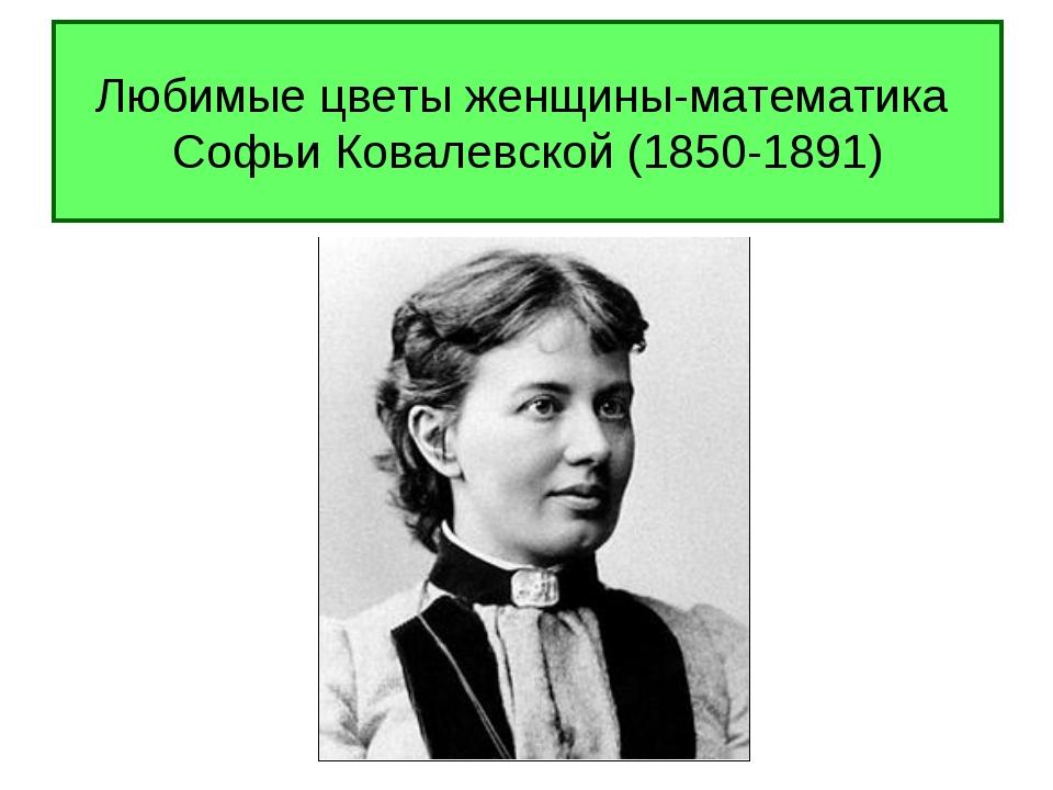 Любимые цветы женщины-математика Софьи Ковалевской (1850-1891)