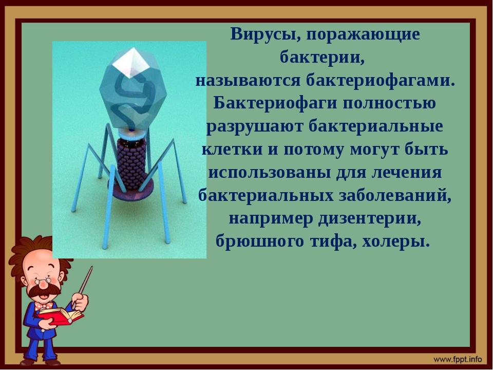 Вирусы, поражающие бактерии, называются бактериофагами. Бактериофаги полность...