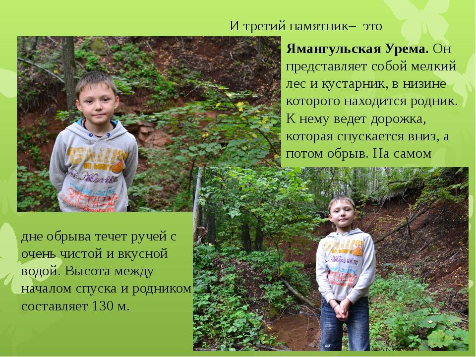 И третий памятник– это Ямангульская Урема. Он представляет собой мелкий лес...