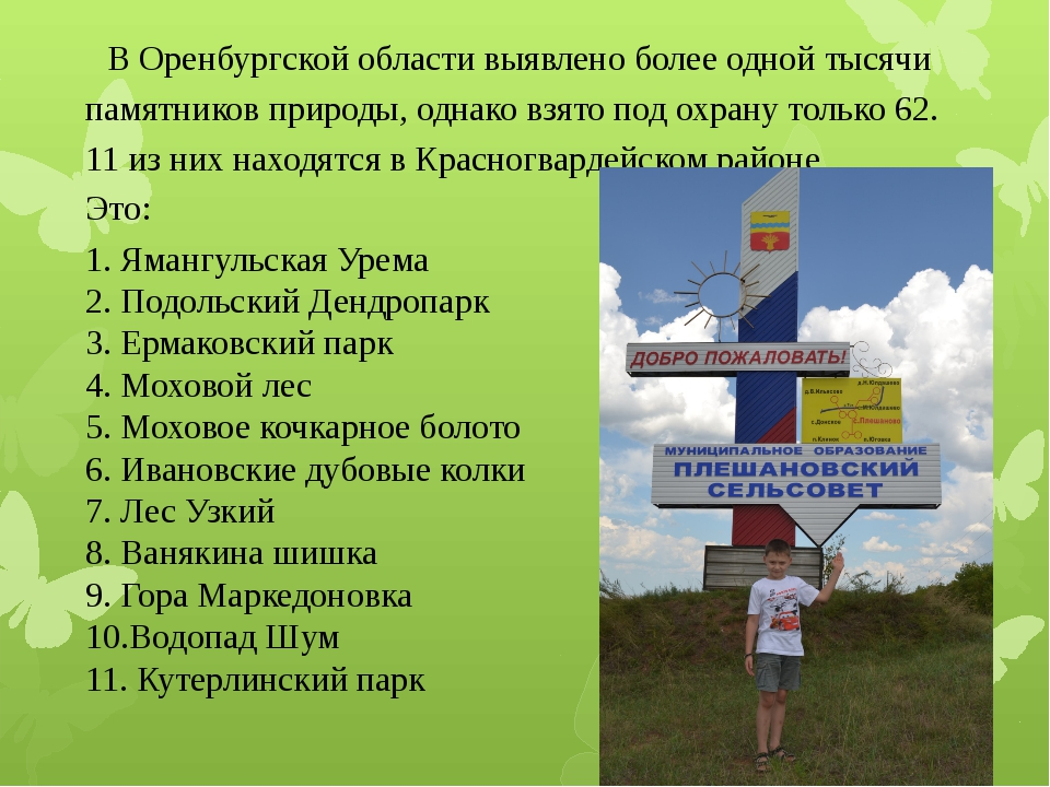 В Оренбургской области выявлено более одной тысячи памятников природы, однак...