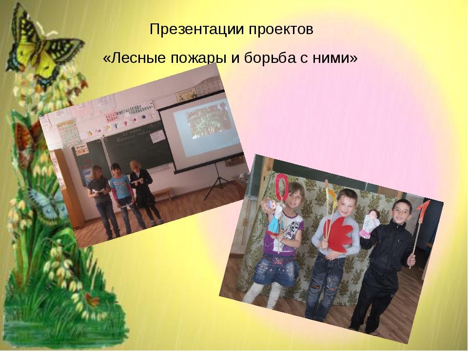 Презентации проектов «Лесные пожары и борьба с ними»