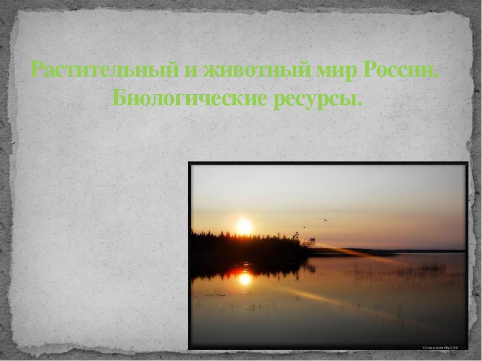 Растительный и животный мир России. Биологические ресурсы.
