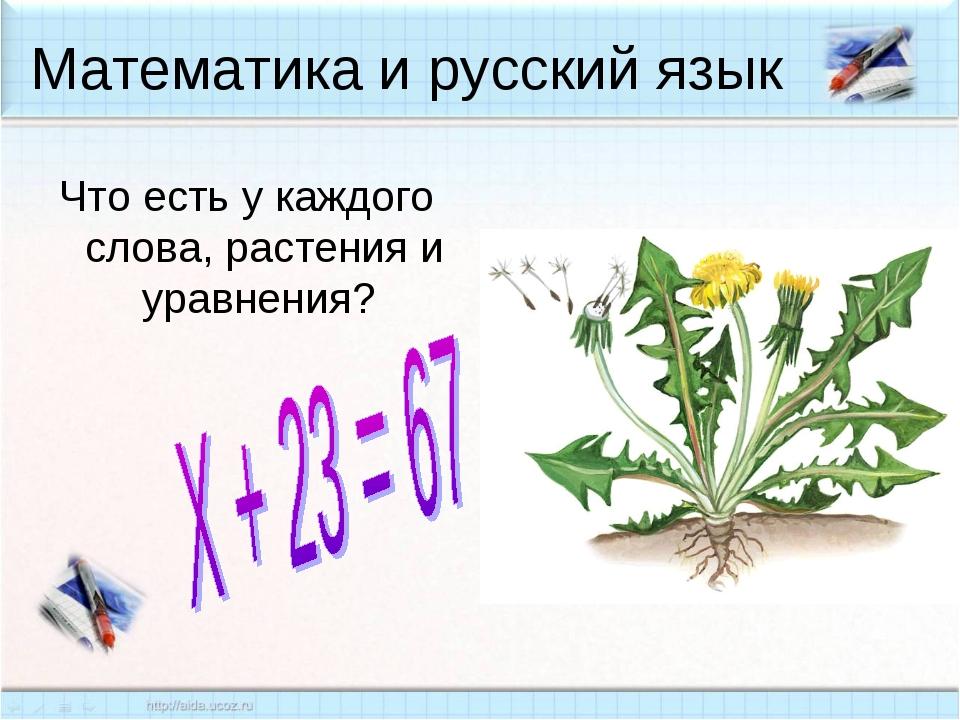Математика и русский язык Что есть у каждого слова, растения и уравнения?