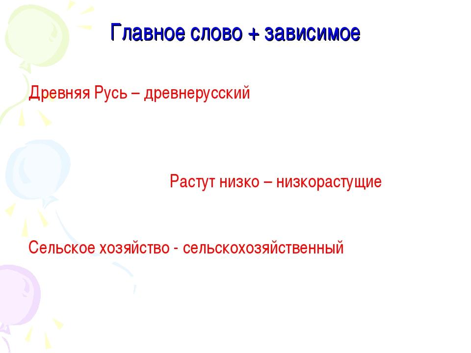 Главное слово + зависимое Древняя Русь – древнерусский  Растут низко –...