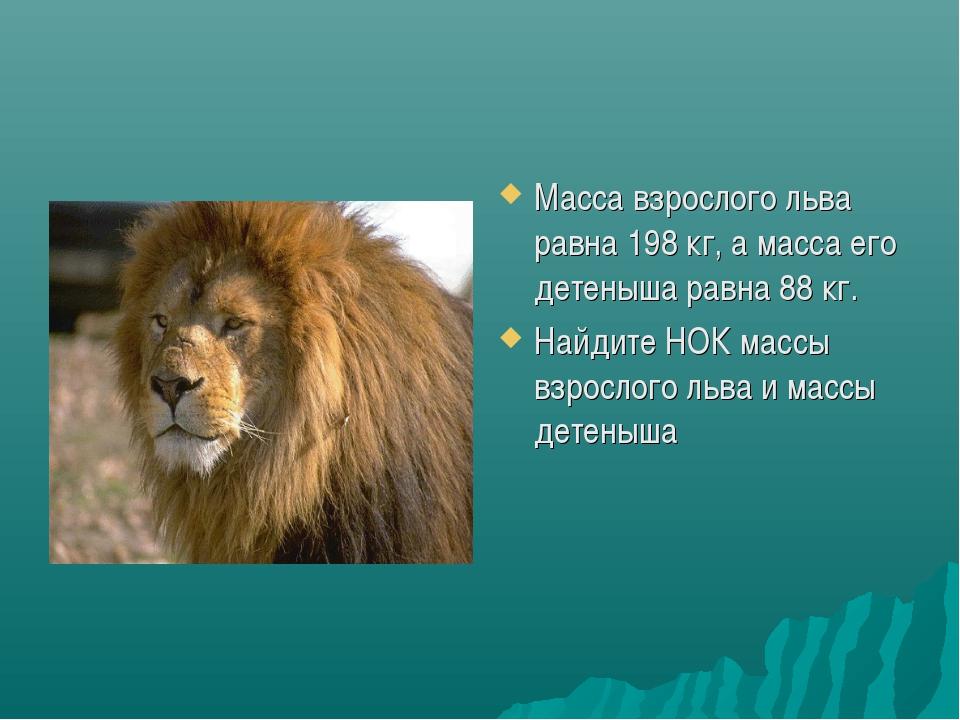 Масса взрослого льва равна 198 кг, а масса его детеныша равна 88 кг. Найдите...