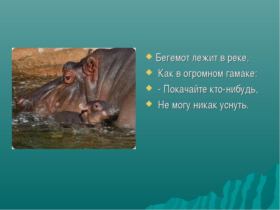 Бегемот лежит в реке, Как в огромном гамаке: - Покачайте кто-нибудь, Не могу...