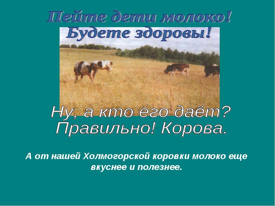 А от нашей Холмогорской коровки молоко еще вкуснее и полезнее.