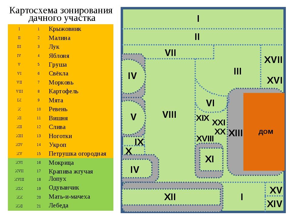Картосхема зонирования дачного участка дом I1Крыжовник II2Малина III3Лу...