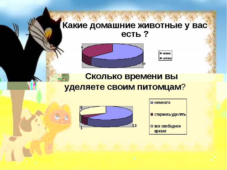 Какие домашние животные у вас есть ? Сколько времени вы уделяете своим питомц...