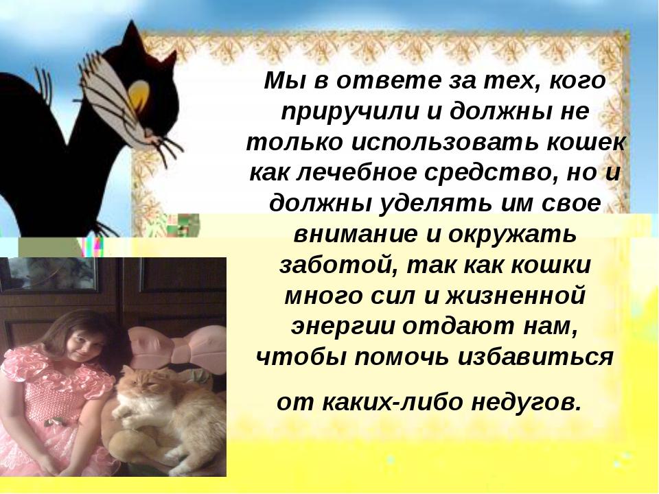 Мы в ответе за тех, кого приручили и должны не только использовать кошек как...