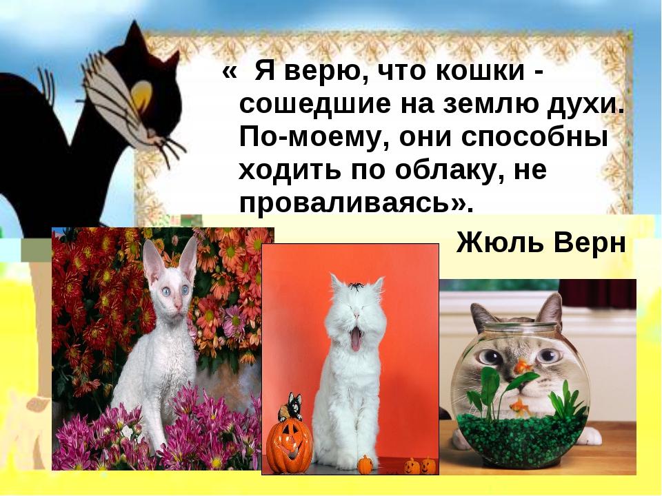 « Я верю, что кошки - сошедшие на землю духи. По-моему, они способны ходить...