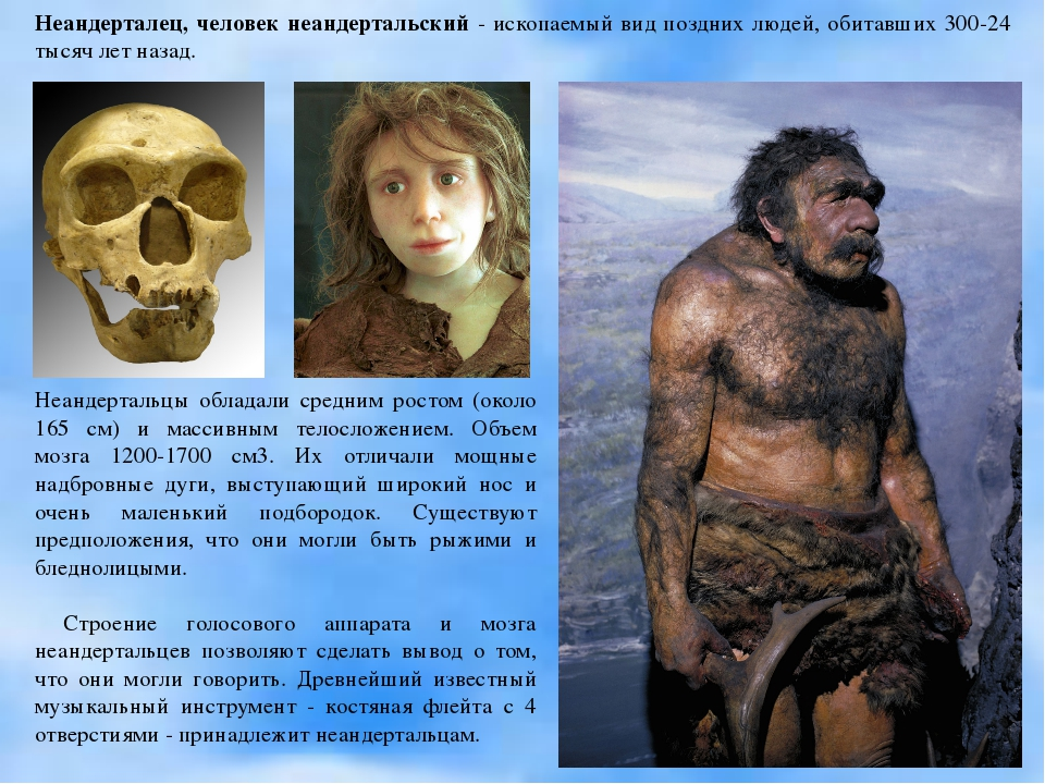 Неандерталец, человек неандертальский - ископаемый вид поздних людей, обитавш...