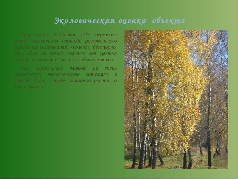 Экологическая оценка объекта Парк имени 250-летия ТОЗ, березовая роща, озеле...