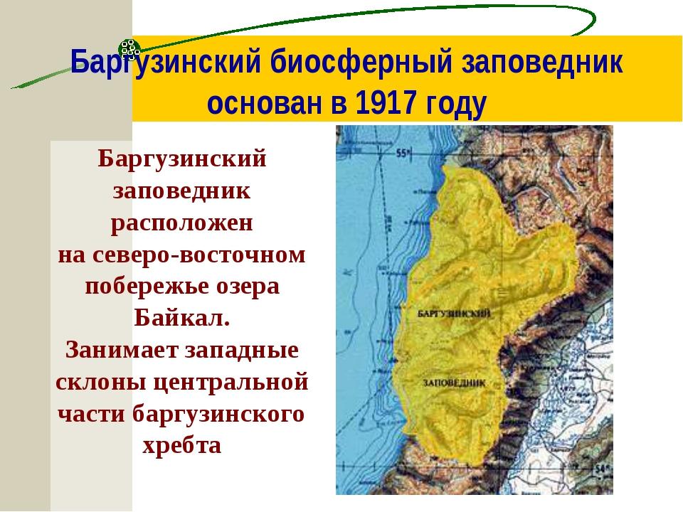 Баргузинский биосферный заповедник основан в 1917 году Баргузинский заповедни...