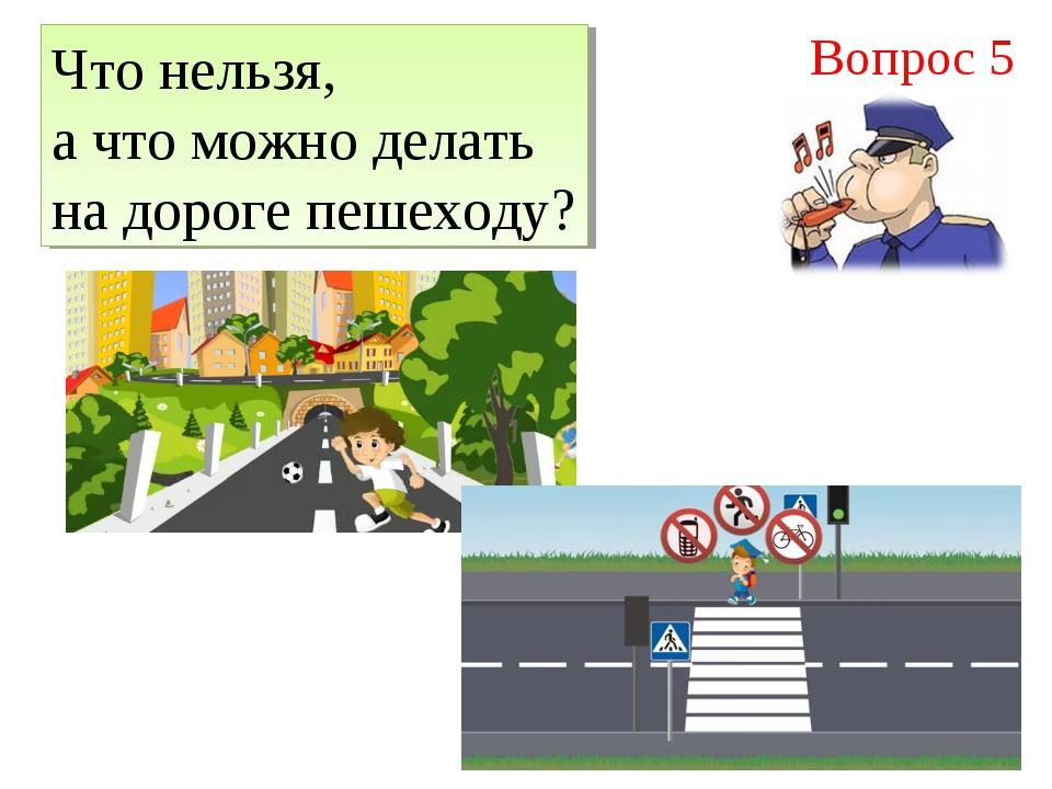Что нельзя, а что можно делать на дороге пешеходу? Вопрос 5