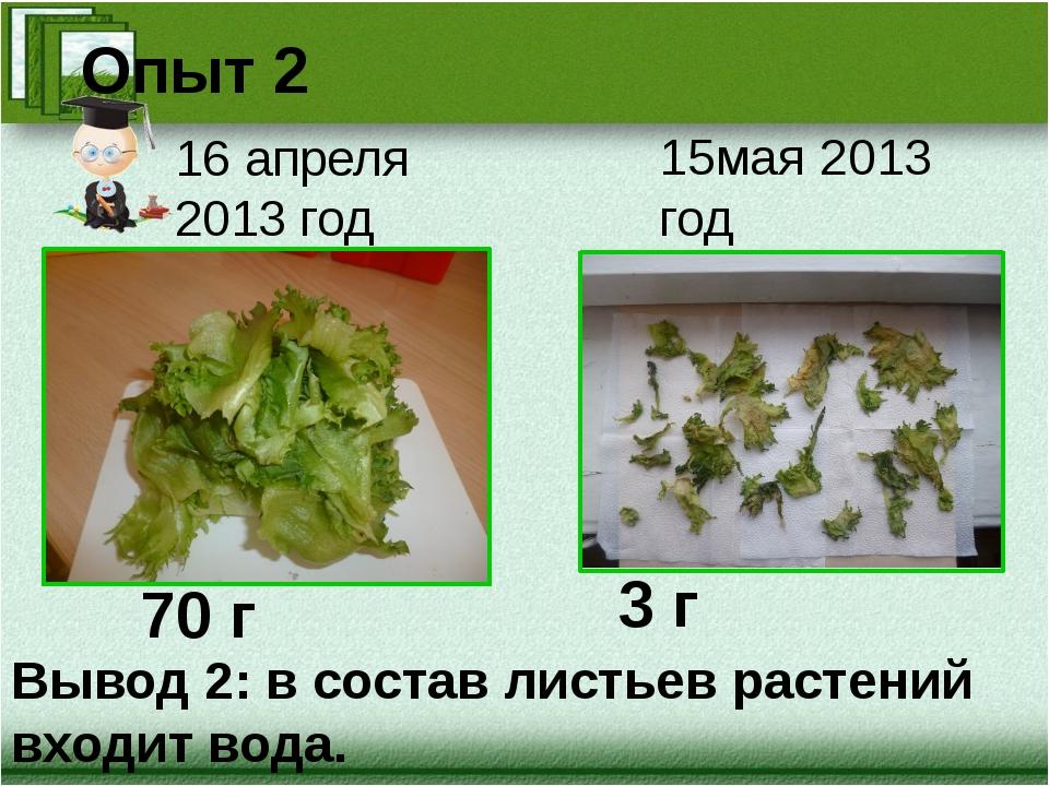 16 апреля 2013 год 15мая 2013 год Опыт 2 Вывод 2: в состав листьев растений в...