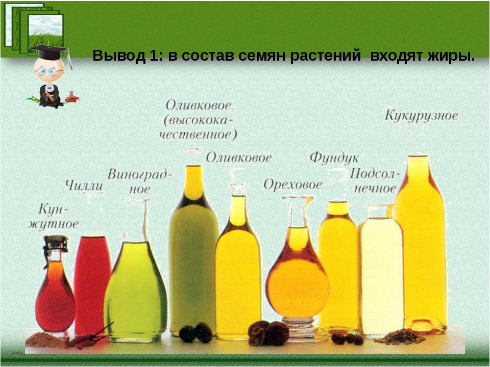 Вывод 1: в состав семян растений входят жиры.