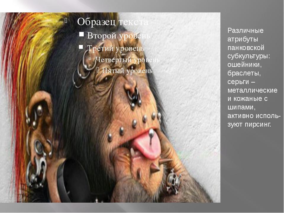 Различные атрибуты панковской субкультуры: ошейники, браслеты, серьги – метал...