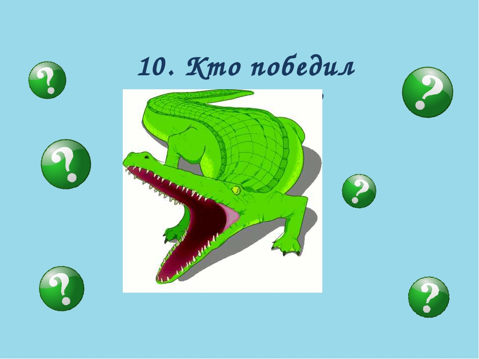 10. Кто победил крокодила?