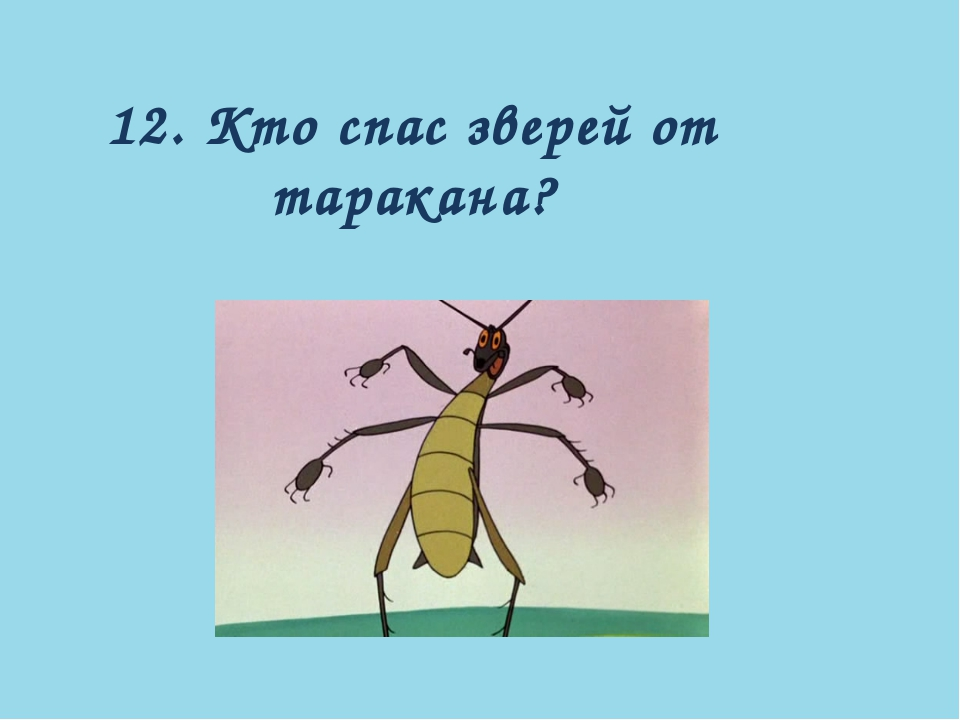 12. Кто спас зверей от таракана?