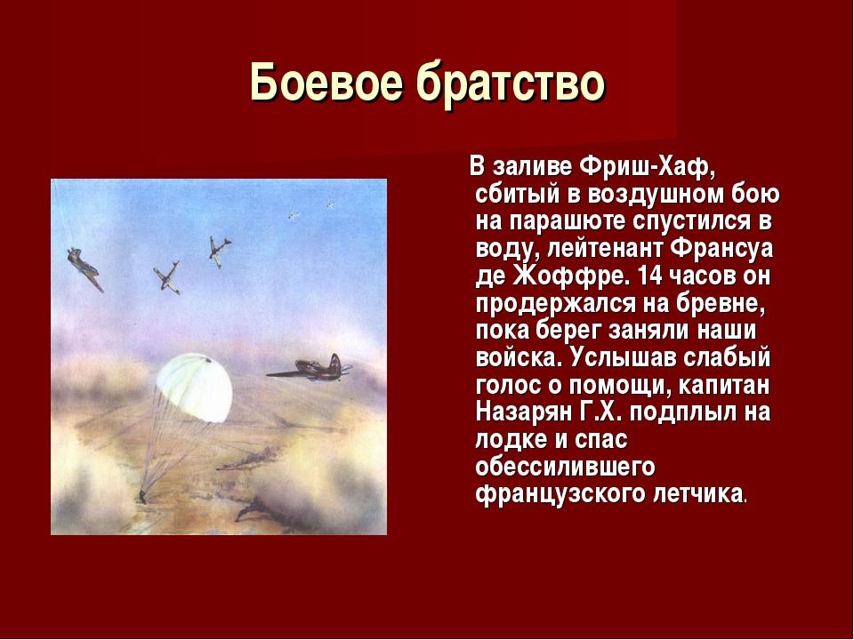 Боевое братство В заливе Фриш-Хаф, сбитый в воздушном бою на парашюте спустил...