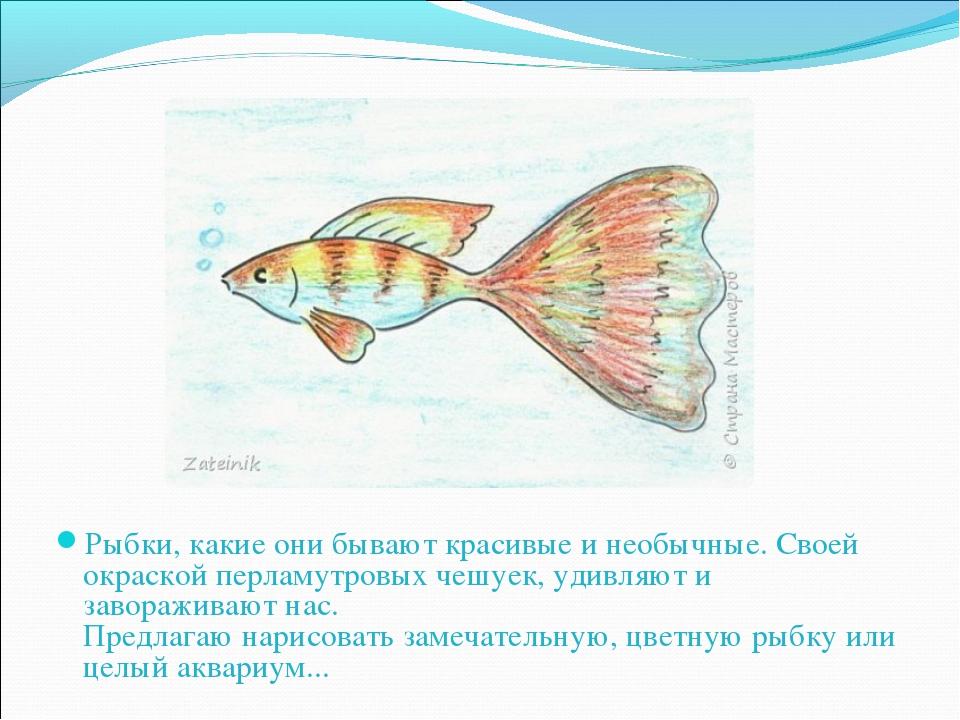 Рыбки, какие они бывают красивые и необычные. Своей окраской перламутровых че...