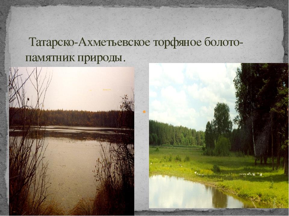 Татарско-Ахметьевское торфяное болото- памятник природы.