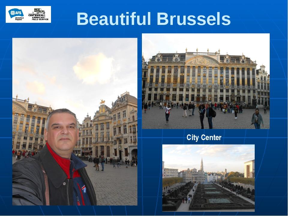 Beautiful Brussels City Center