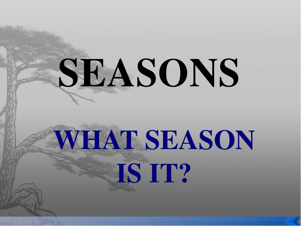 SEASONS WHAT SEASON IS IT?