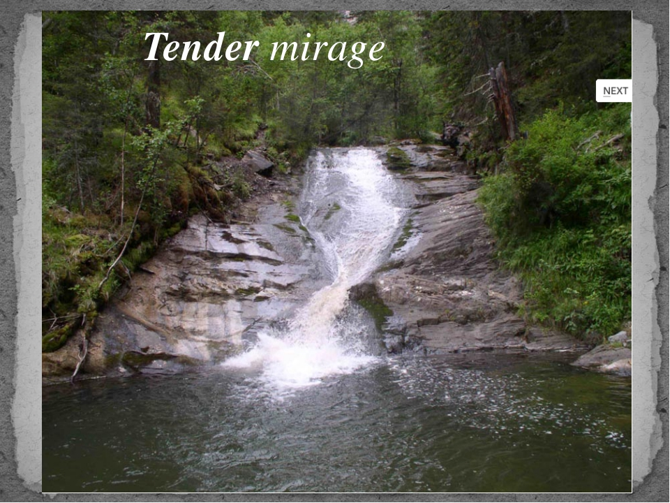 Tender mirage