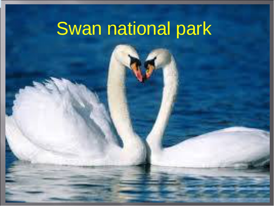 Swan national park
