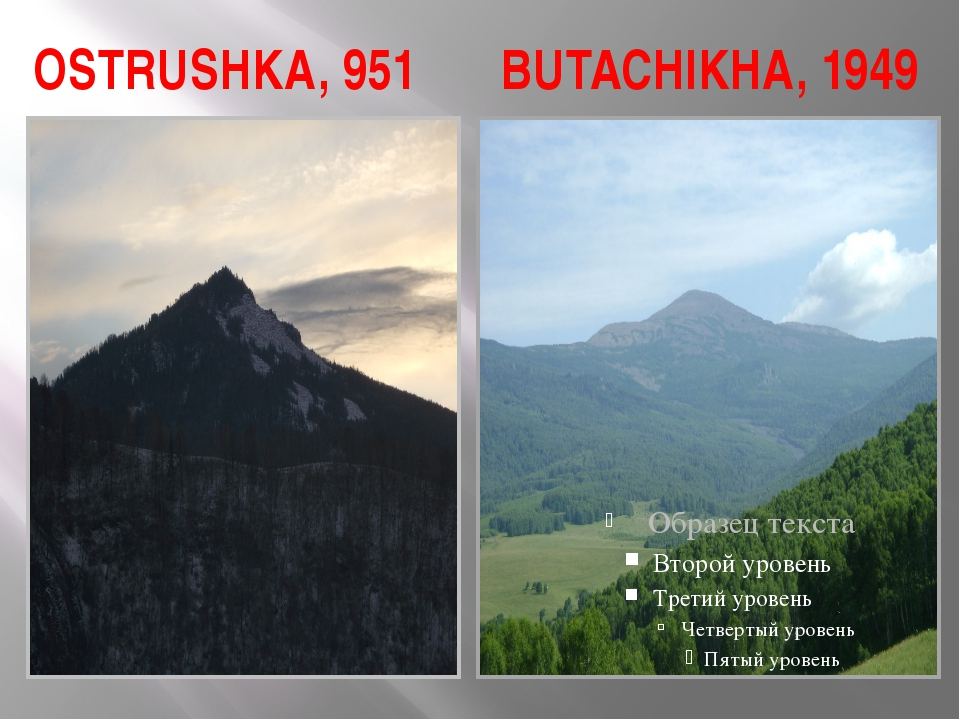 OSTRUSHKA, 951 BUTACHIKHA, 1949