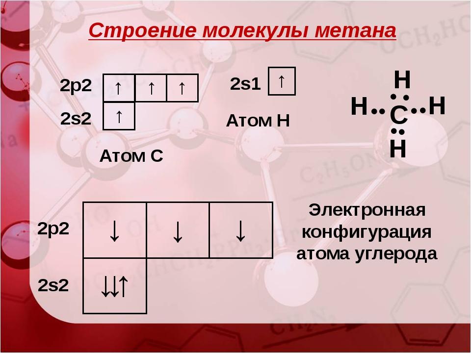 ↓ ↓↑ ↓ ↓ 2s2 2p2 ↓ Электронная конфигурация атома углерода Строение молекулы...