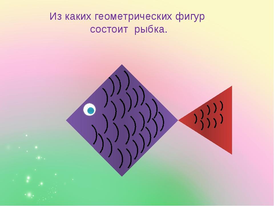 Из каких геометрических фигур состоит рыбка.
