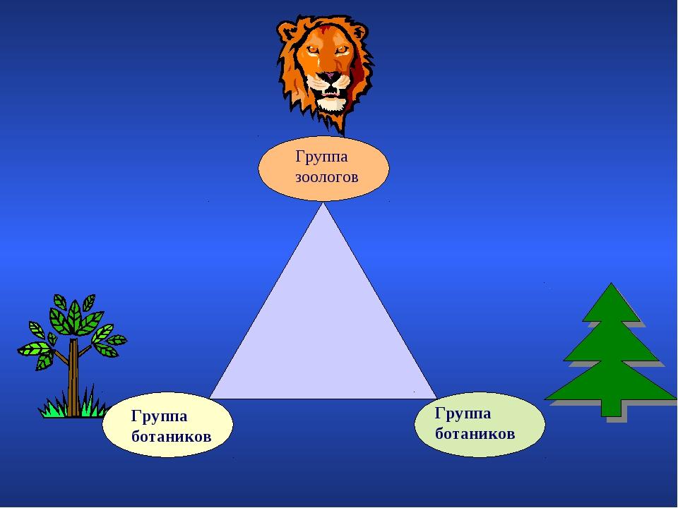 Группа зоологов Группа ботаников Группа ботаников