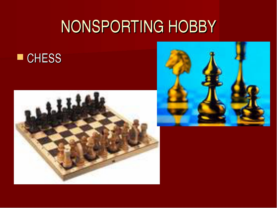 NONSPORTING HOBBY CHESS